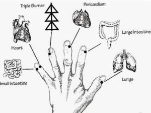 Точки по човешката ръка