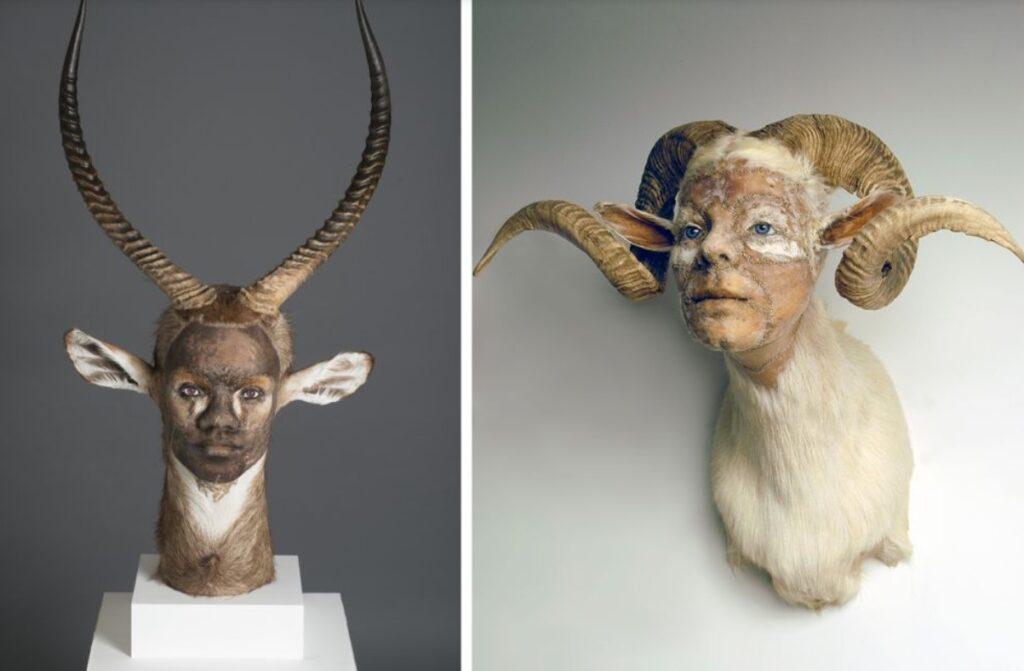 """Из изложба на тема """"Човекът - животно"""" от статията Как ни разболяват емоциите"""