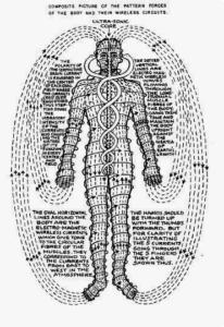 Меридиани в човешкото тяло